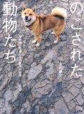 20110812115210.jpg